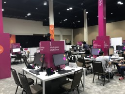 Environmental graphics - Summit 2020