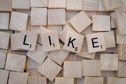 Essentials of Social Media Management